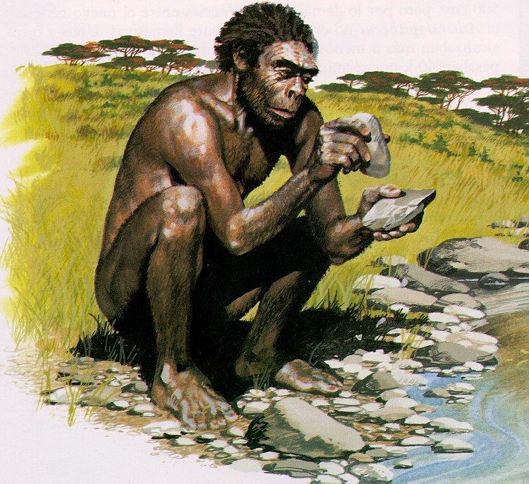 Homo habilis, Homo ergaster y Homo erectus : nuestros primeros