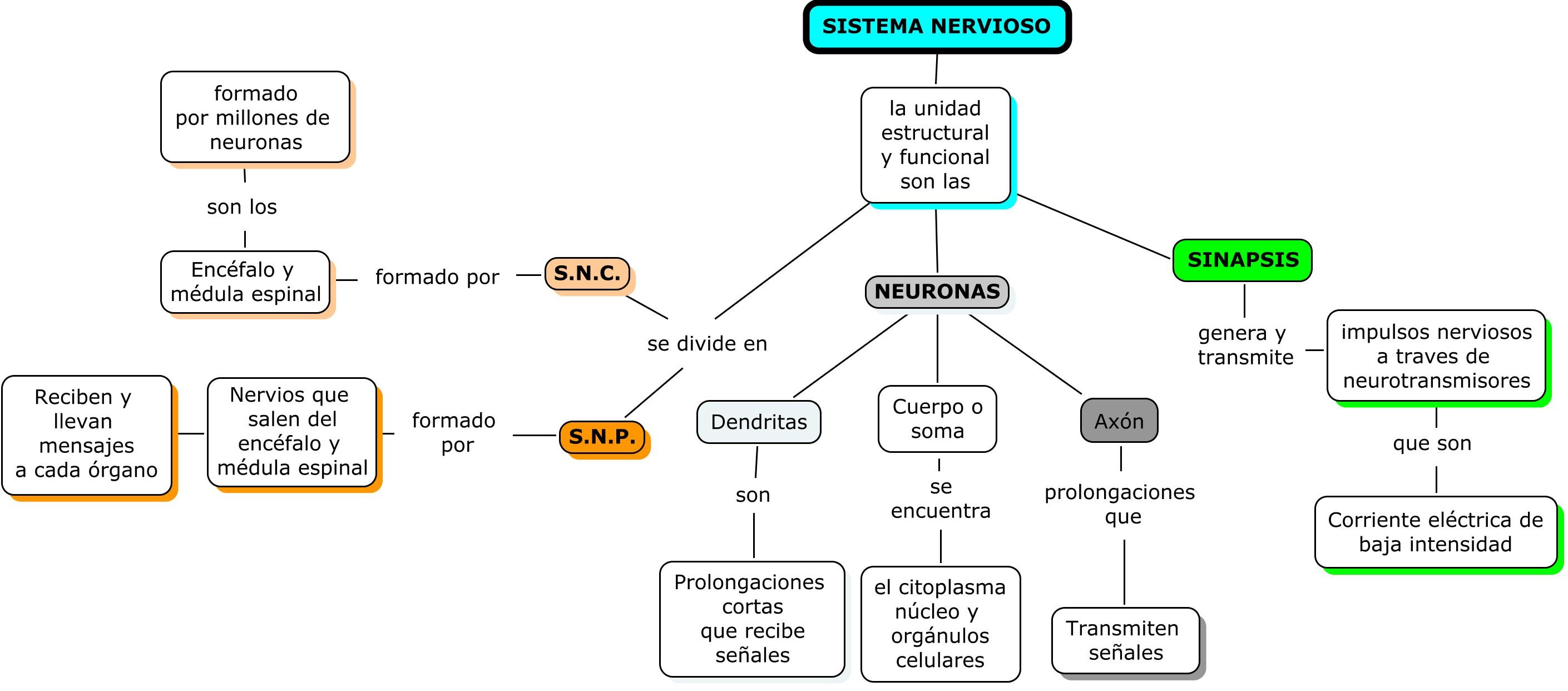 C. NATURALEZA/ C. SOCIALES 6º : septiembre 2014