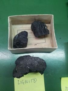 Carbón Lignito