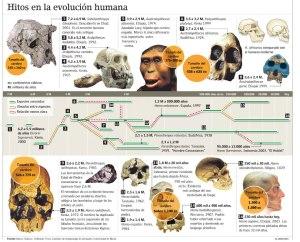 Darwin-Evolucion-Humana