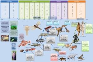 esquema-eras-geologicas